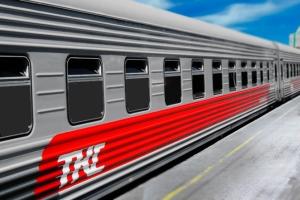 Условия перевозки животных в поездах перевозчика АО «ТКС»